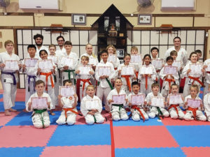 Kids Martial arts training in Helensvale
