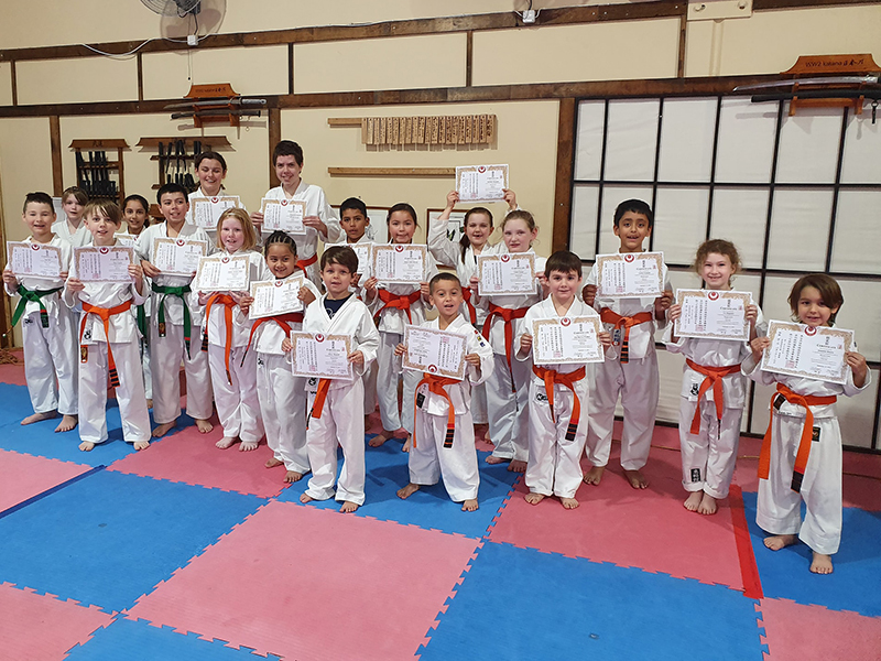 P3, Toyakan International Karate Organisation Helensvale, Queensland